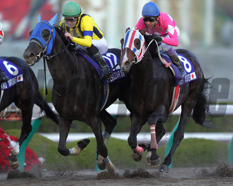 Belshazzar wins the Japan Cup Dirt (G1).<br /> Photo by Masakazu Takahashi