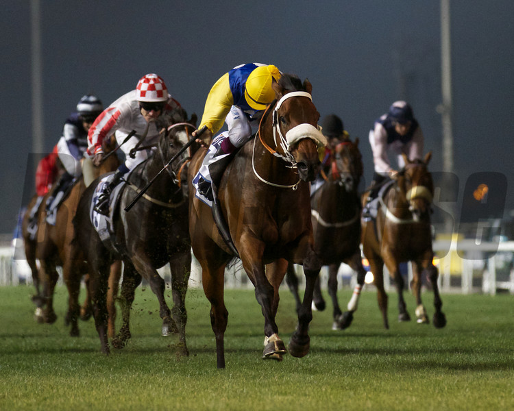 Shea Shea wins the Al Quoz Sprint