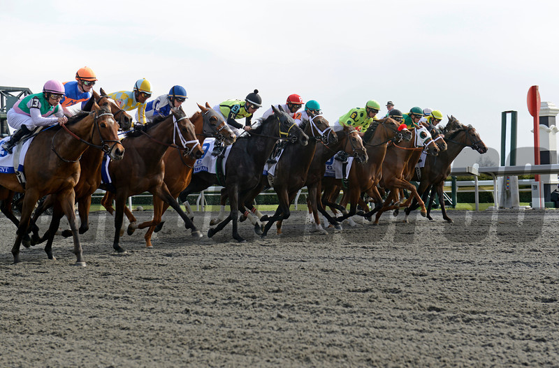 start of 2013 Ashland Stakes won by Emollient with Mike Smith<br /> Ashland 2 image 976<br /> Anne M. Eberhardt photo