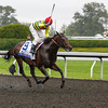 Silver Max with Robby Albarado up wins the 28th Running of The Shadwell Turf Mile that was run on the poly track due to rain at Keeneland on October 5, 2013 in Lexington, Ky.<br /> Mark Mahan Photo