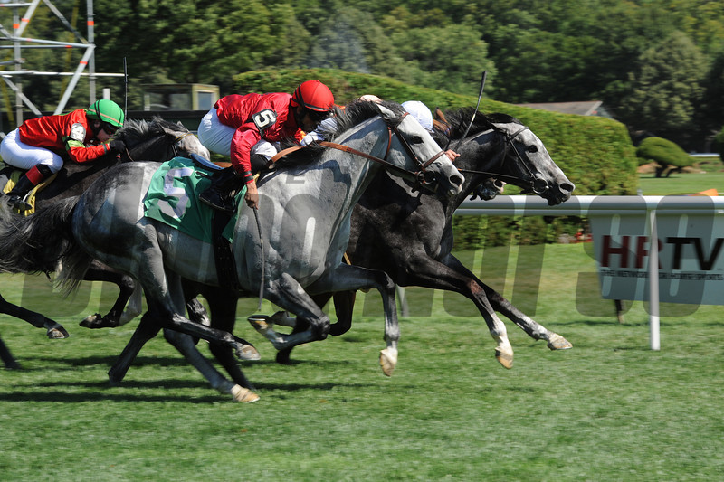 Seal Cove - Allowance Win, July 24, 2013.<br /> Coglianese Photos