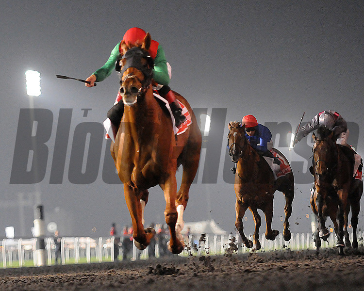 Animal Kingdom, Joel Rosario up wins the Dubai Cup, Meydan, March 30th, 2013, photo by Mathea Kelley<br /> Dubai World Cup Day