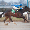 Lady Banks wins the 2013 Ruthless Stakes.<br /> Coglianese Photos