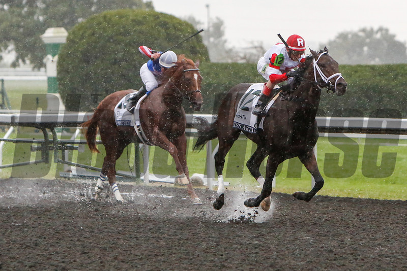 We Miss Artie with John Velazquez aboard wins the 100th Running of The Dixiana Breeders' Futurity (Grade 1) stake in the pouring rain at Keeneland on October 5, 2013, in Lexington, Ky.<br /> Mark Mahan Photo