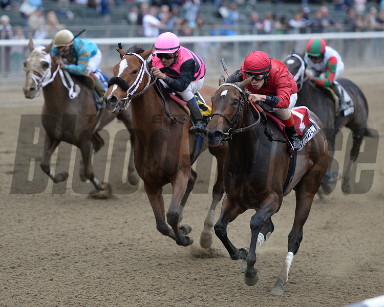 Glorious View wins the 2013 Vagrancy Handicap at Belmont Park.<br /> Photo by: Joe Labozzetta/NYRA