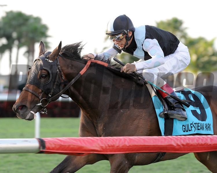 Amira's Prince wins the 2013 Mac Diarmida Stakes.<br /> Coglianese Photos/Kenny Martin
