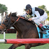 Amira's Prince wins the 2013 Mac Diarmida Stakes.<br /> Coglianese Photos/Kenny Martin