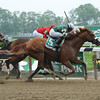 Declan's Warrior wins the 2013 Gygistar.<br /> Coglianese Photos