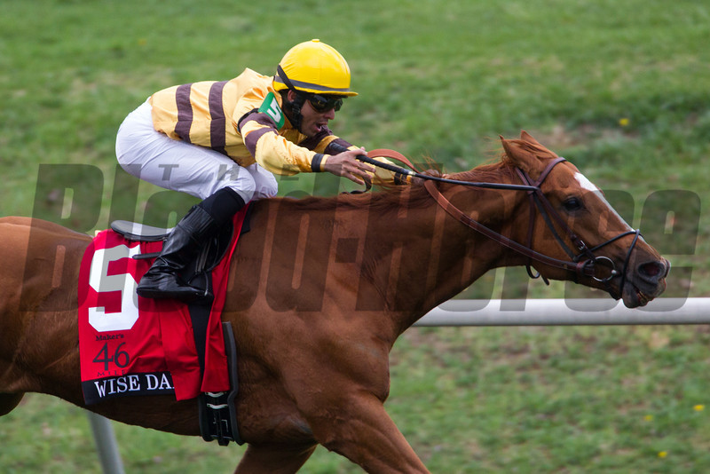 Wise Dan; Jose Lezcano up; wins the Markers Mark MIle.<br /> Photo by Mark Mahan
