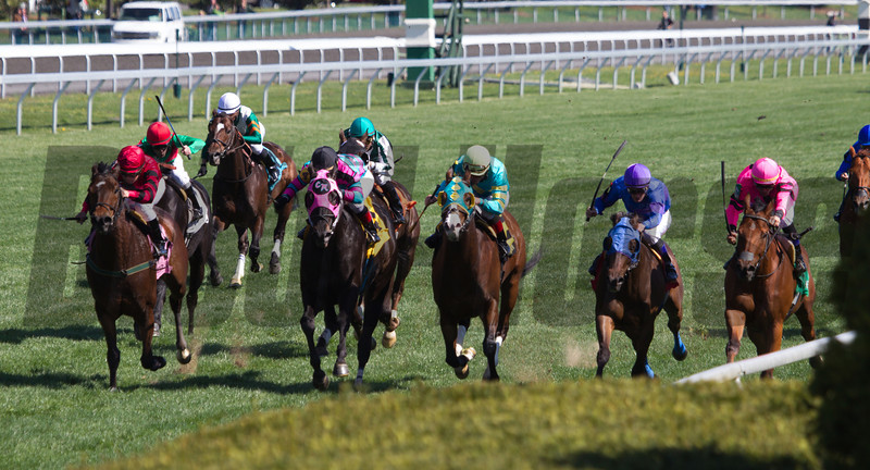 Havelock with Garrett Gomez (along rail in pink silks #5) aboard noses a win in the 17th Running of The Shakertown (Grade III) at Keeneland on April 13, 2013.  Photo by Mark Mahan