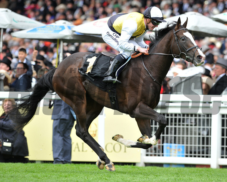 Berkshire, Jim Crowley up, wins the Chesham Stakes, Royal Ascot; UK, photo by Mathea Kelley; 6/22/13