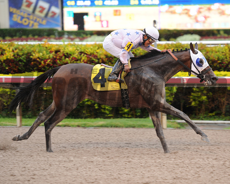 Black Diamond Cat wins the 2013 Housebuster.<br /> Coglianese Photos/Leslie Martin