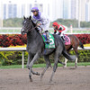 Clearly Now wins the 2013 Swale Stakes.<br /> Coglianese Photos/Kenny Martin