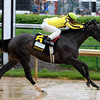 Aubby K wins the Humana Distaff (gr. I). <br /> Dave Harmon Photo