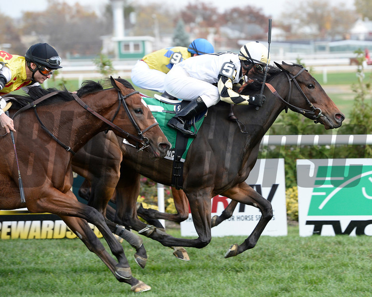 Watsdachances wins the 2013 Summer Secretary.<br /> Coglianese Photos/Joe Labozzetta