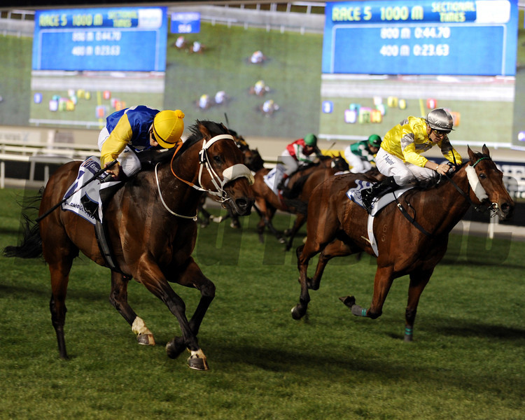Shea Shea winning the Al Quoz Sprint.  <br /> Photo by Dave Harmon