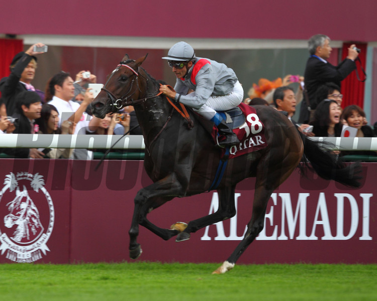 Treve proved to be a cut above in a star-studded field for the 92nd Qatar Prix de l'Arc de Triomphe (Fr-I) as she romped through the straight unchallenged to win in a tour de force performance Oct. 6 at Longchamp.<br /> Photo by Masakazu Takahashi