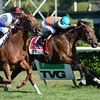 Laughing wins the 2013 Ballston Spa.<br /> Coglianese Photos
