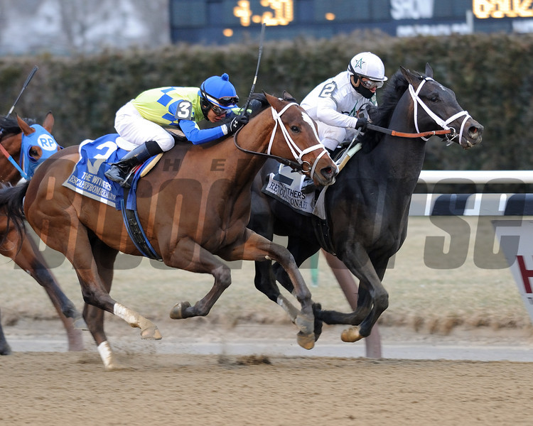 Revolutionary wins the 2013 Withers.<br /> Coglianese Photos