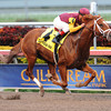 Discreet Dancer wins the 2013 Gulfstream Park Handicap.<br /> Coglianese Photos/Courtney Heeney