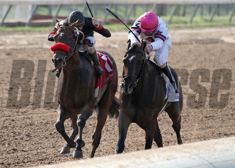8/3/2013  -  Holiday Mischief and jockey M. Berry (black silks) overtakes Sunbean with Corey Lanerie aboard at the wire to win the 30th running of the $100,000 Super Derby Prelude at Louisiana Downs.  Hodges Photography / Lynn Roberts