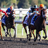 """My Conquestadory with Eurico Da Silva aboard comes from last to win the The 62nd running of The Darley Alcibiades (Grade 1) """"Win and You're In Juvenile Fillies Division"""" at Keeneland, Lexington, Ky. on October 4, 2013.<br /> Mark Mahan Photo"""