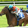 Tannery wins the 2013 Sheepshead Bay.<br /> Coglianese Photos/Joe Labozzetta
