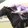 Racing from Ascot 22/6/13. The Hardwike Stakes won by Thomas Chippendale and Johnny Murtagh .<br /> Trevor Jones Photo