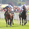 Racing from York 21/8/13 The Juddmonte International Stakes.<br /> Declaration of War (centre) wins from Trading Leather (right) with Al Kazeem (obscured).<br /> Trevor Jones Photo