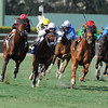 Point of Entry wins the 2013 Gulfstream Park Turf Handicap.<br /> Coglianese Photos/Eleanor Gustafson