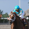 Mordi's Miracle wins the 2013 Millions Classic Preview Stakes.<br /> Coglianese Photos