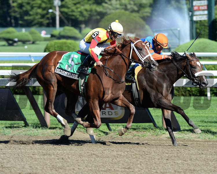 Designer Legs, a Louisiana-bred filly who cost $10,000 at auction and began her career in the upper Midwest, shipped into Saratoga Race Course and emerged with a grade II victory to her credit in the $196,000 Adirondack Stakes Aug. 11.<br /> Coglianese Photos