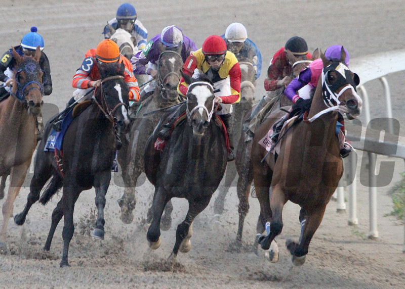 12/14/2014  -  Ladyzarbridge (right)  with Rosie Napravnik aboard leads the pack into the stretch and goes on to win the 23rd running of the $100,000 Louisiana Champions Day Ladies at Fair Grounds.  Hodges Photography / Amanda Hodges Weir