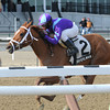 Princess of Sylmar wins the 2013 Busher Stakes.<br /> Coglianese Photos
