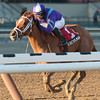 Princess of Sylmar wins the 2013 Busanda.<br /> Coglianese Photos