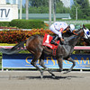 Black Diamond Cat wins the 2013 Montbrook.<br /> Coglianese Photos/Leslie Martin