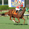 Parranda wins the 2013 Our Dear Peggy Stakes.<br /> Coglianese Photos/Leslie Martin