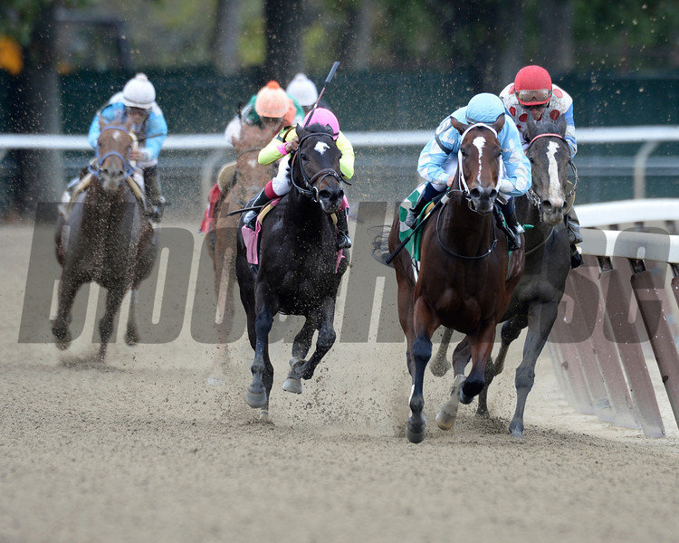 Cluster of Stars wins the 2013 Iroquois.<br /> Coglianese Photos