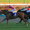 Asia Express wins the Asahi Hai Futurity Stakes<br /> Naoji Inada Photo