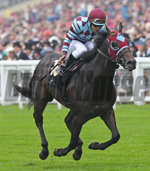 Racing from Royal Ascot 20/6/13. The Norfolk Stakes <br /> The winner No Nay Never ridden by Joel Rosario sets a course record for 2yr. olds.<br /> Trevor Jones Photo