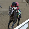 Cairo Prince wins the Nashua Stakes 11/3/2013.<br /> Coglianese Photos/JOE LABOZZETTA