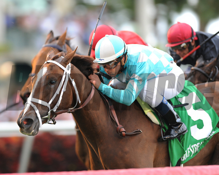 Channel Lady wins the 2013 Suwannee River Stakes.<br /> Coglianese Photos/Courtney Heeney