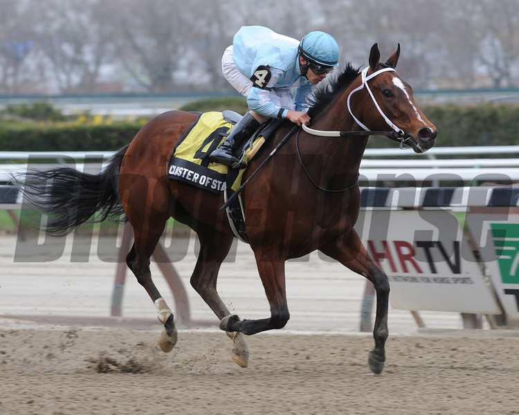 Cluster of Stars wins the 2013 Distaff Handicap.<br /> Coglianese Photos/Courtney Heeney