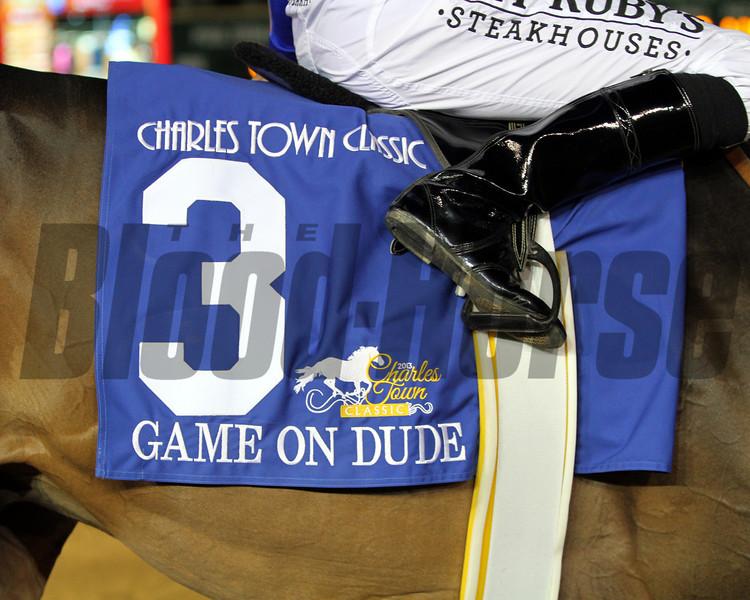 Game On Dude Saddle Cloth
