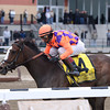 Summer Applause wins the 2013 Top Flight.<br /> Coglianese Photos/Joe Labozzetta