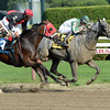 Bigger Is Bettor wins the 2013 Evan Shipman Stakes.<br /> Coglianese Photos