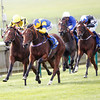 Racing from Newmarket 17/9/13.<br /> The Shadwell Fillies Mile won by Chriswelliam ridden by Richard Hughes (BLUE & YELLOW) from Rizeena (YELLOW)<br /> Trevor Jones Photo