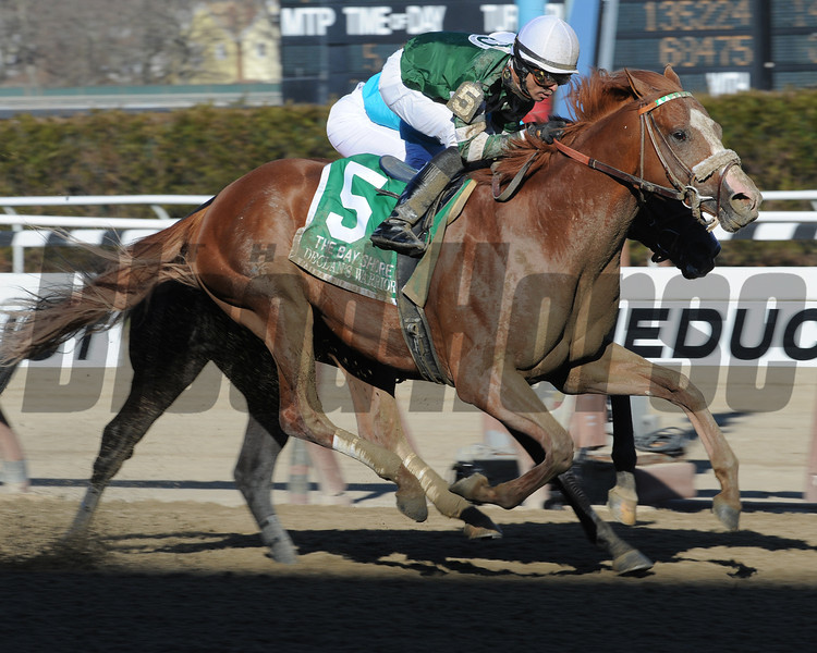 Declan's Warrior wins the 2013 Bay Shore.<br /> Coglianese Photos/David Alcosser