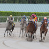 Golden Mystery wins the Florida Sunshine Millions Filly and Mare Sprint.<br /> Coglianese Photos/Eleanor Gustafson