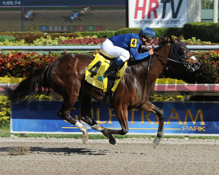 Centrique wins the 2013 Claiming Crown Glass Slipper. <br /> Coglianese Photos